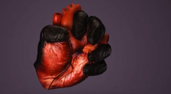 4. do 10. Svibnja – dani svijesnosti o zatajenju srca